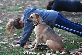 woman doing pushups and dog