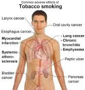 effects of smoking graphic