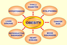 obesity graphic