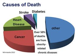 deaths from obesity