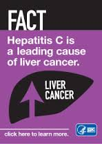 hep c and liver